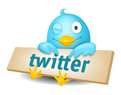 Практические советы по размещению рекламы в твитере